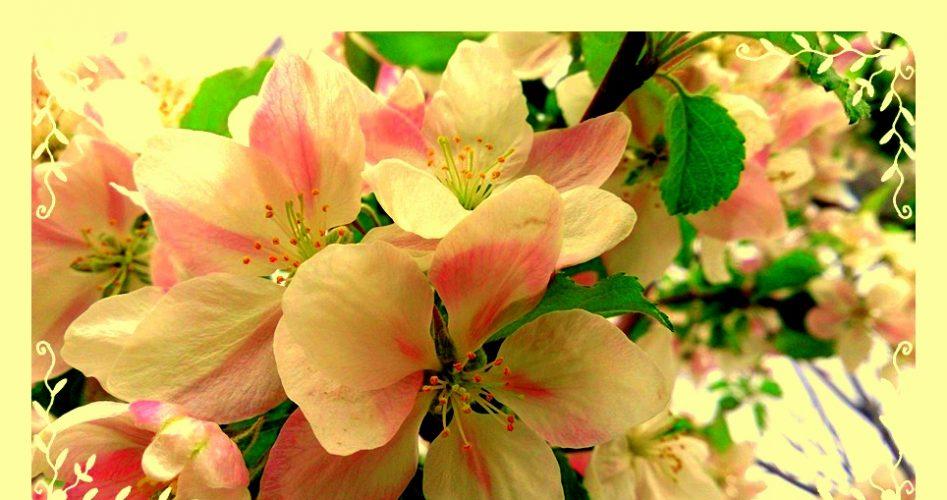 çiçekle